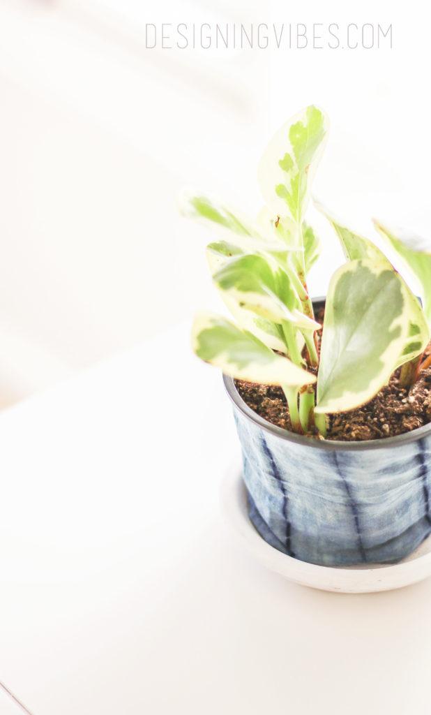 no-sew diy fabric planter shibori