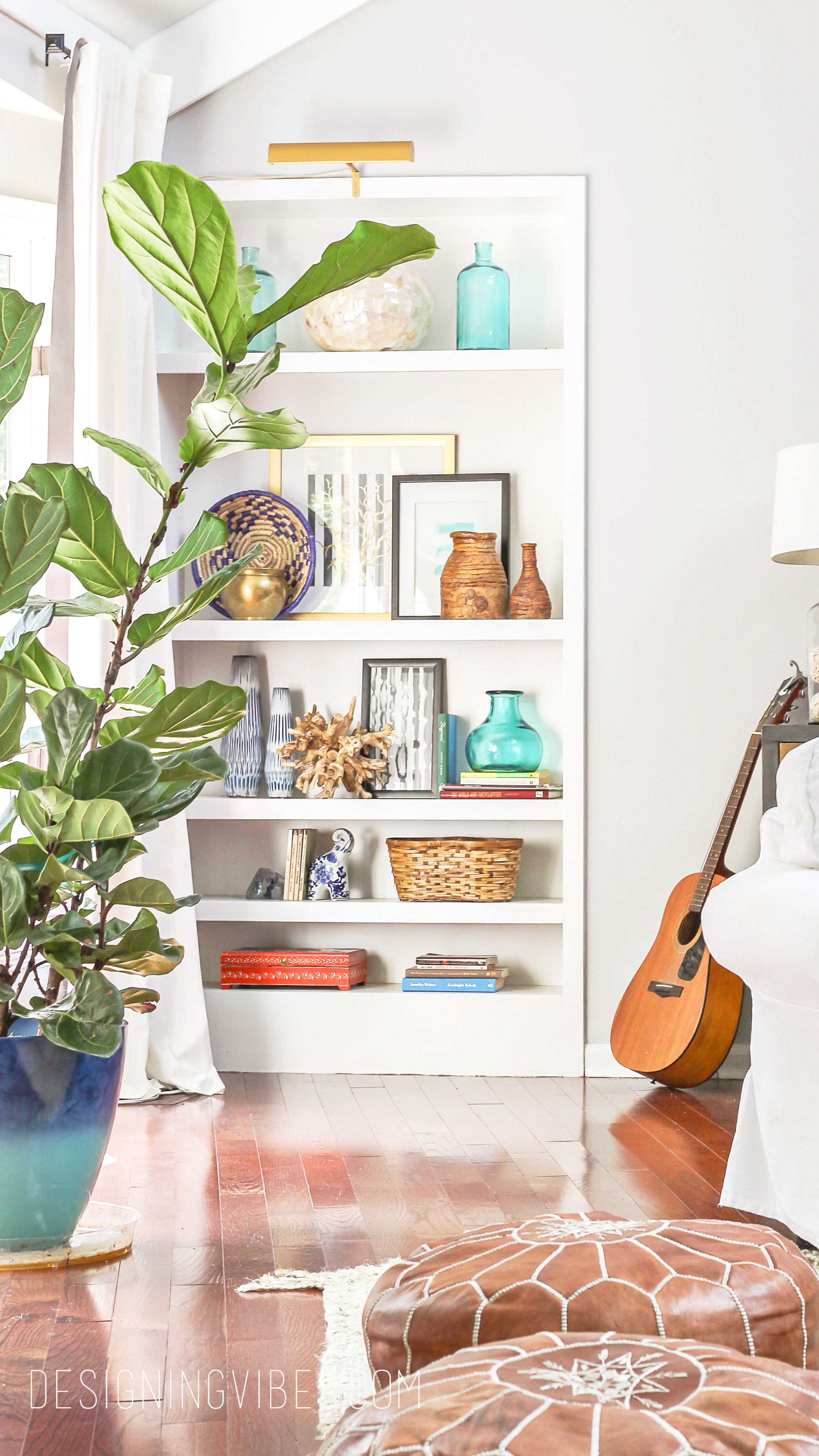 How to Care for a Fiddle Leaf Fig – Black Thumb's Guide