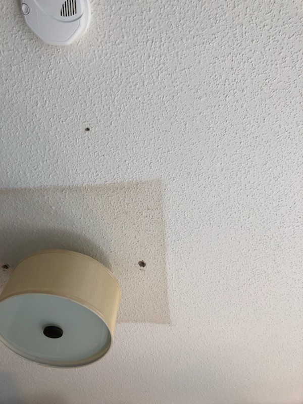 the hack to removing popcorn ceilings fast